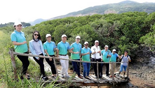 Aramco Asia Supports Mangrove Conservation in Fujian