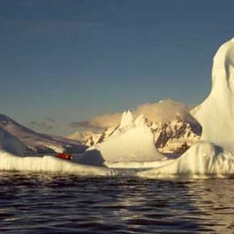 Barnaby B. Bear: Antarctic Peninsula